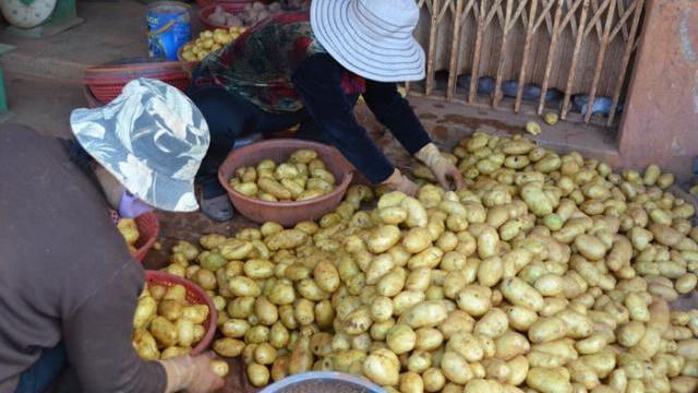 Hé lộ chiêu thức hoá kiếp nông sản Trung Quốc nhái hàng Đà Lạt