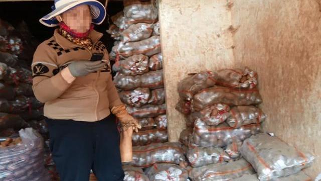 Đường đi của nông sản Trung Quốc đội lốt Đà Lạt Bùa hợp thức