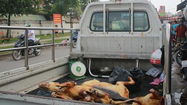 Tiểu thương chợ thịt chó lớn nhất Sài Gòn bất ngờ ôm hàng bỏ chạy
