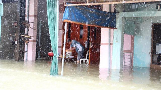 Mưa lũ nhấn chìm nhà dân, trâu bò phải trú ẩn trên vỉa hè thành phố ở Quảng Nam