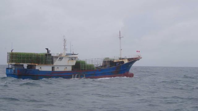 Xua đuổi tàu cá nước ngoài đánh bắt trái phép trên vùng biển Quảng Ngãi