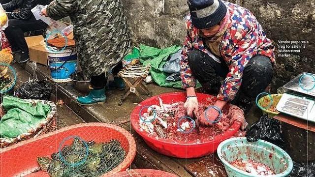 Video mà người dùng mạng tuyên bố là quay ở một khu chợ ở Vũ Hán