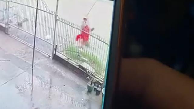 Camera ghi cảnh một phụ nữ đi bộ sụp xuống mương ngay trên đường